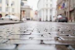 低角度射击了湿老路面在有浅焦点的塔林 免版税库存照片