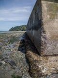 低防波堤浪潮 库存照片