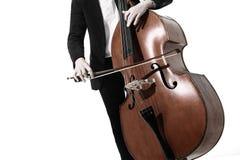 低音提琴递低音提琴 库存照片