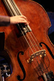 低音提琴 免版税图库摄影