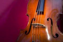 低音提琴 图库摄影