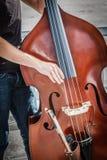 低音提琴 免版税库存照片