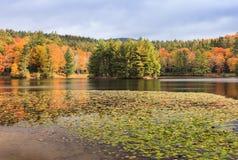 低音湖在秋天北卡罗来纳 库存图片