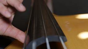 低音演奏员特写镜头 影视素材