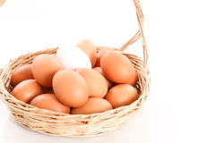 低头在鸡鸡蛋中的鸡蛋在一个木篮子 库存照片