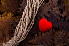 系住和在秋天背景干燥叶子的一个心形的象  库存图片