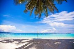 系住在大棕榈树的摇摆在白色沙滩 库存照片