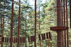 系住在树/绳索的足迹追猎在树 库存图片