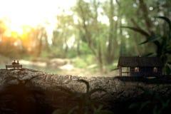 住在湖附近的一个木房子 库存照片