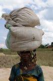 住在非洲 库存图片