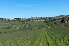 住宅区拉达伊恩基亚恩蒂全景美丽的景色和葡萄园和橄榄树在Chianti地区,托斯卡纳,意大利 免版税库存照片