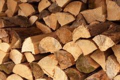 围住木柴,干燥切好的木柴背景注册堆 击倒的堆日志和离开烘干 免版税库存照片