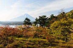 佐仓树和Mt Fujisan 库存照片