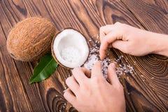 整体和裁减的构成在一半椰子与绿色离开,并且人` s手收集坚果剥落 夏威夷椰子 库存照片