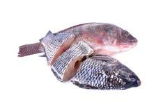 整体和部分切开了在白色backgroun的新鲜的尼罗罗非鱼鱼 库存照片