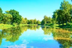 水体在公园是长得太大的泥 库存照片