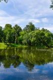 水体在公园是长得太大的泥 免版税库存图片