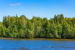 水体在公园是长得太大的泥 免版税图库摄影