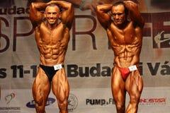 体型冠军欧洲wbpf 库存照片