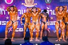 体型冠军肌肉 免版税图库摄影
