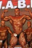 体型冠军wabba世界 免版税库存照片
