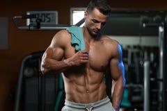 体型是锻炼和营养在它的最好 图库摄影