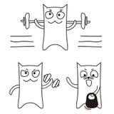 体育猫 免版税图库摄影