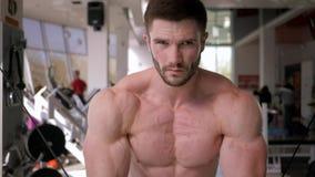 体育生活方式,做在胳膊的肌肉的肌肉运动员人力量锻炼在牵引模拟器的在健身房锻炼 股票视频