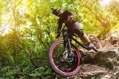 体育运动 一辆自行车的一个骑自行车者有一个登山车的在森林里 免版税库存照片
