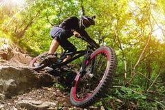 体育运动 一辆自行车的一个骑自行车者有一个登山车的在森林里 图库摄影