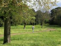 体育运动 在行动的一个赛跑者在公园 免版税库存图片