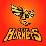 体育队的现代专业商标 大黄蜂吉祥人 大黄蜂,在轻的背景的传染媒介标志 向量例证