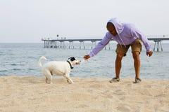 体育hoody使用的愉快的年轻非裔美国人的人行家与他的在海滩的狗晴天 免版税图库摄影