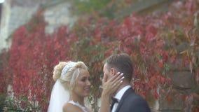 体贴抚摸她在墙壁的可爱的恋人的面颊华美的白肤金发的新娘的敏感画象 股票视频