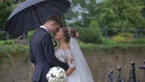 体贴摩擦愉快的华美的新婚佳偶的夫妇的半身画象在雨中引导在伞下 股票录像