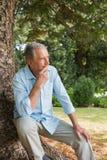 体贴的成熟人坐树干 免版税库存图片