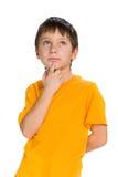 体贴的男孩查寻 免版税库存图片