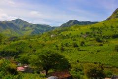 佛得角农业风景,火山的绿色肥沃山峰 库存照片