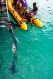 佛得角的,非洲渔夫 免版税图库摄影