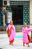 年轻佛教妇女禁欲主义者或尼姑走去在Botahtaung塔学习 库存图片