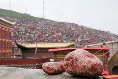 佛教学院在四川,中国 免版税图库摄影