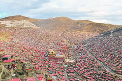佛教学院wuming larong的seda 免版税库存照片