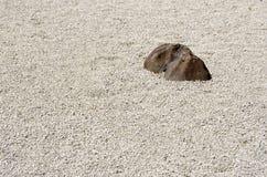 佛教庭院日本石禅宗 免版税库存照片