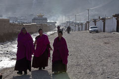佛教藏语 库存照片