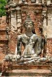 佛教雕象在Wat Mahathat在阿尤特拉利夫雷斯,泰国 库存照片