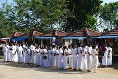 佛教lankan sri崇拜者 库存图片