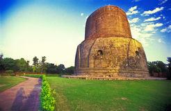 佛教sarnath stupa寺庙 库存照片