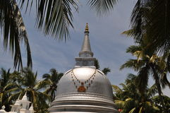 佛教Stupa在棕榈树下,斯里兰卡 库存图片