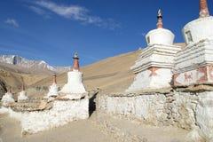 佛教stupas在Karzok,拉达克,印度 库存图片