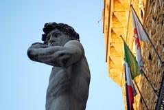 佛罗伦萨,意大利- 2015年11月:米开朗基罗Buonarroti,拷贝大卫雕象在Signoria的广场 库存图片